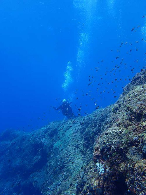 沖は海も青くもあって