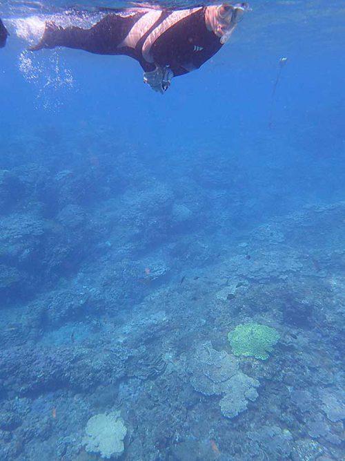 岩場を抜けてちょっと沖まで泳いで出ていき